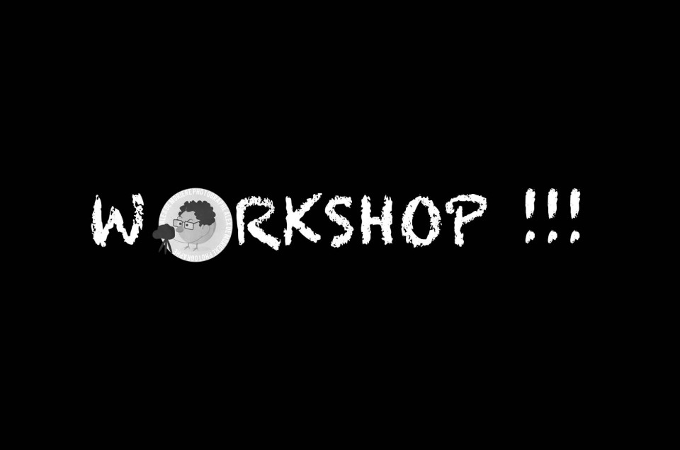 WORKSHOP D'AVRIL